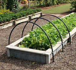 Build a DIY Raised Bed Garden From Scratch!  YouTube